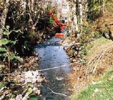 Stream Bank Restoration